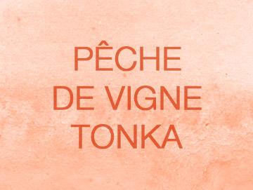 pechevignetonka
